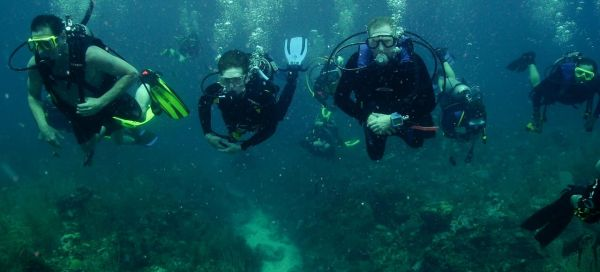 First two diving parks open in summer 2014