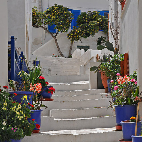 Amazing Greek yards and outdoors12