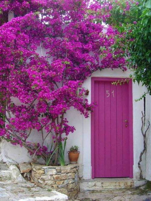 Amazing Greek yards and outdoors16