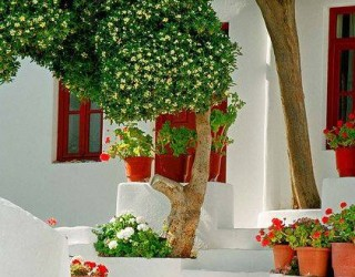 Magical colorful corners of Greece - Gallery